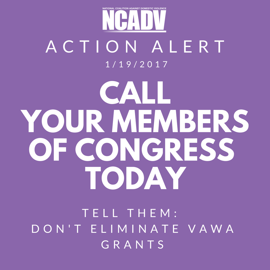 VAWA Grants Action Alert.png